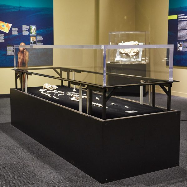 museum display, custom display, custom metal work, willson metalwork, custom fabrication, custom built display